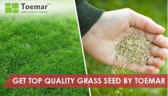 Get Top Quality Grass Seed by Toemar