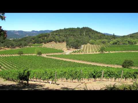 Buy World's Finest Wines Online from Joseph Phelps Vineyards
